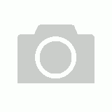 Animated Santa on Rocking Chair